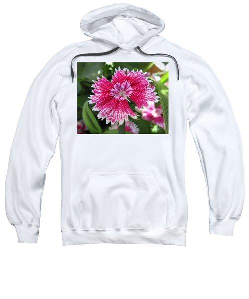Pink Carnation  Sweatshirt