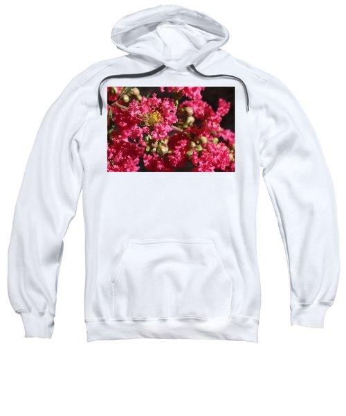 Pink Crepe Myrtle Flowers Sweatshirt