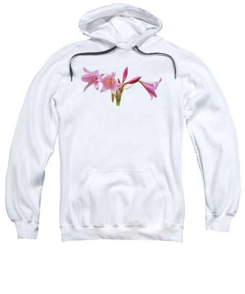 Pink Lilies On Black Sweatshirt by Gill Billington