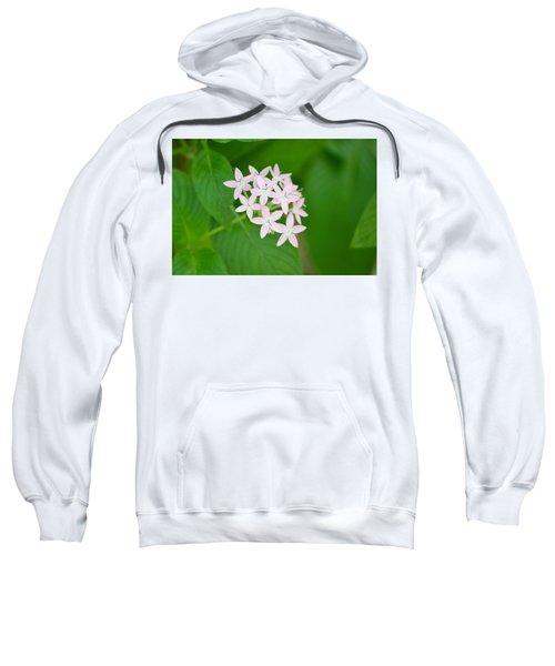 Pink Stars Sweatshirt