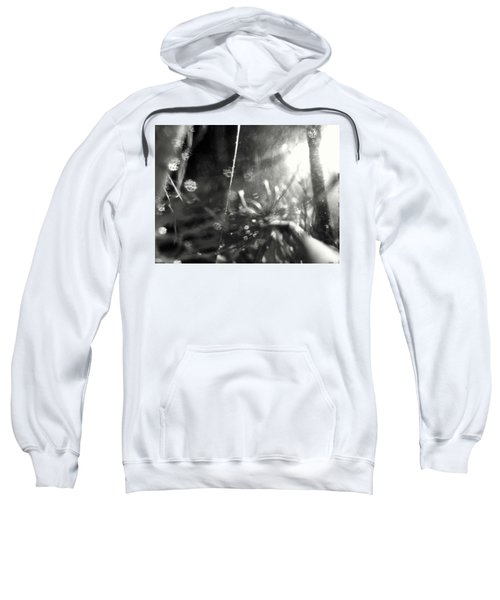 Pirateship Wreck Sweatshirt