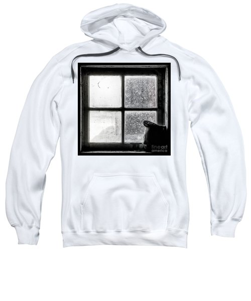 Pitcher In The Window Sweatshirt