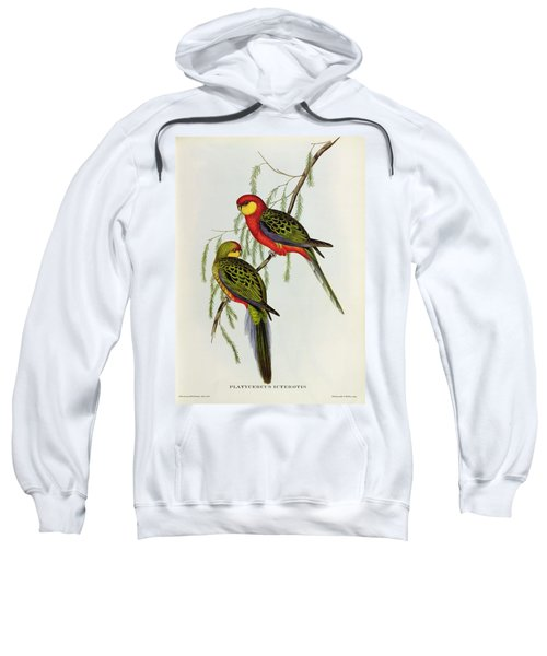 Platycercus Icterotis Sweatshirt by John Gould