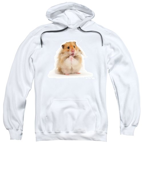 Please Be Mine Sweatshirt
