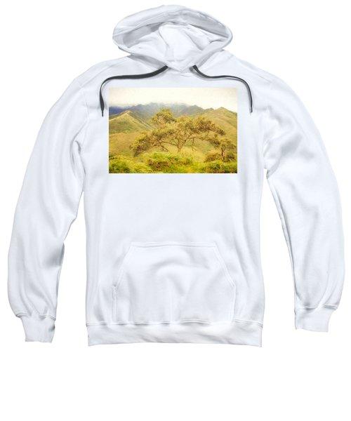 Podocarpus Tree Sweatshirt