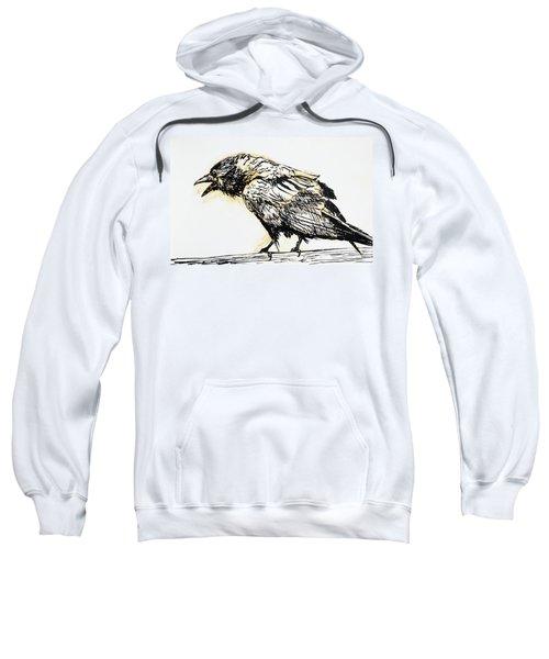 Point Reyes Raven Sweatshirt