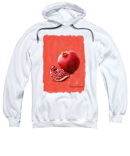 Pomegranate Sweatshirt