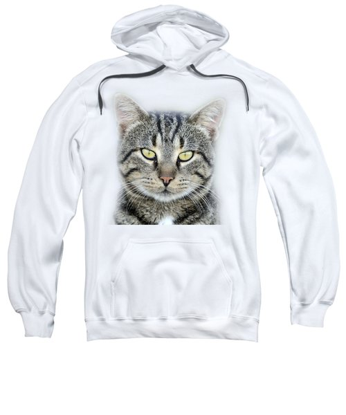Portrait Of A Cat Sweatshirt