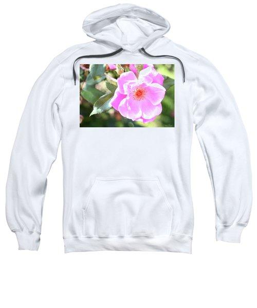 Pretty Pink Rose Sweatshirt