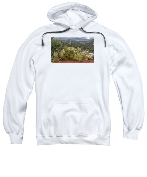 Cactus Country Sweatshirt