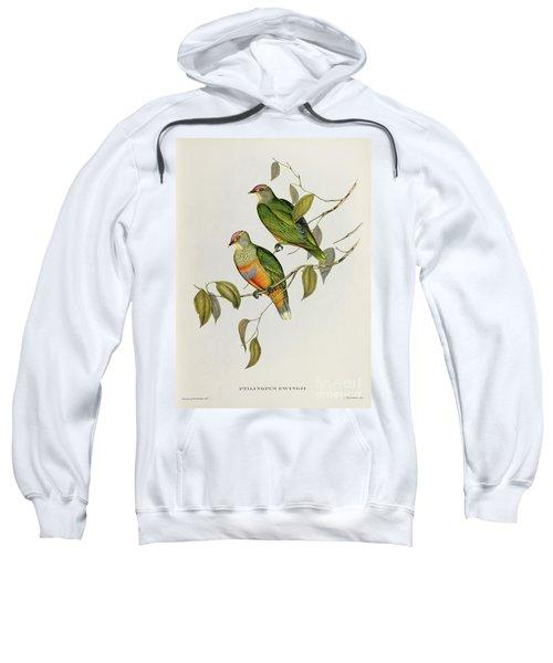 Ptilinopus Ewingii Sweatshirt