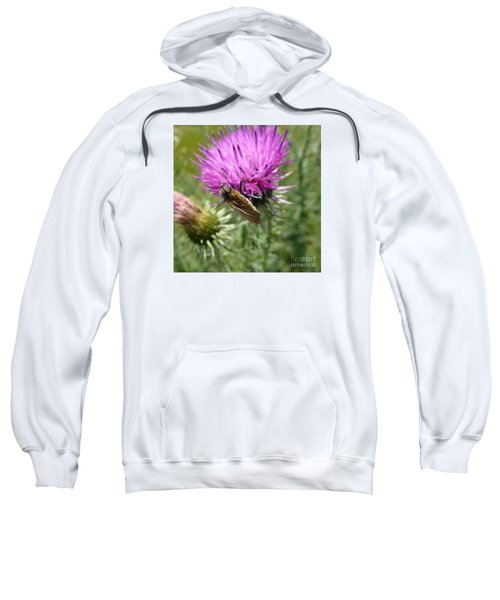 Purple Dandelions 1 Sweatshirt
