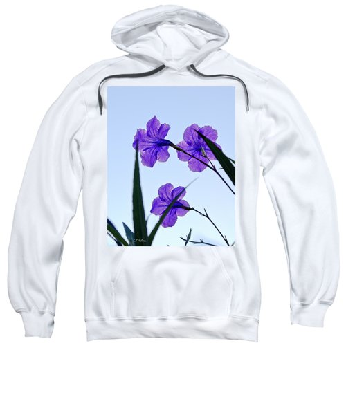Purple Trio Sweatshirt