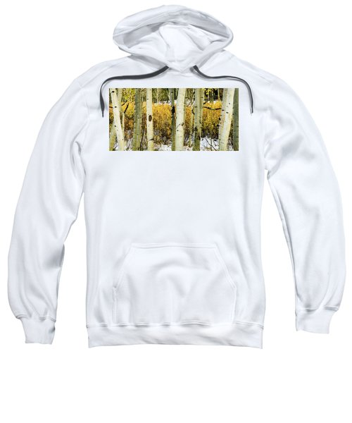 Quakies And Willows In Autumn Sweatshirt