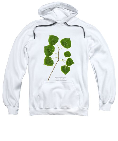 Sweatshirt featuring the photograph Quaking Aspen by Christina Rollo