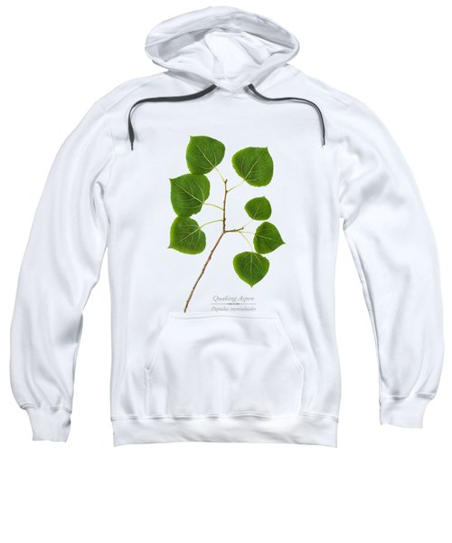 Quaking Aspen Sweatshirt