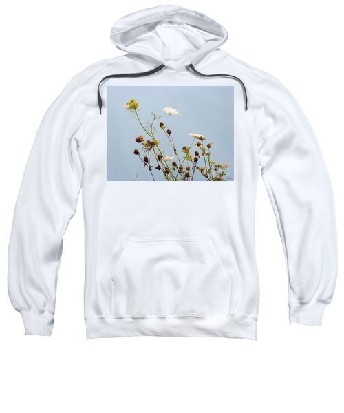 Queen Anne's Lace And Dried Clovers Sweatshirt