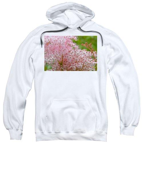 Queen Of The Prairie Nature Art Sweatshirt
