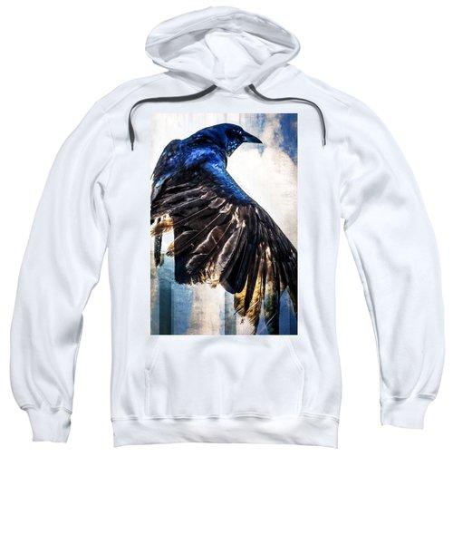 Raven Attitude Sweatshirt