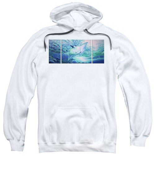 Ray Sweatshirt