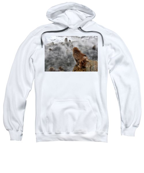 Ready For The Plunge Sweatshirt