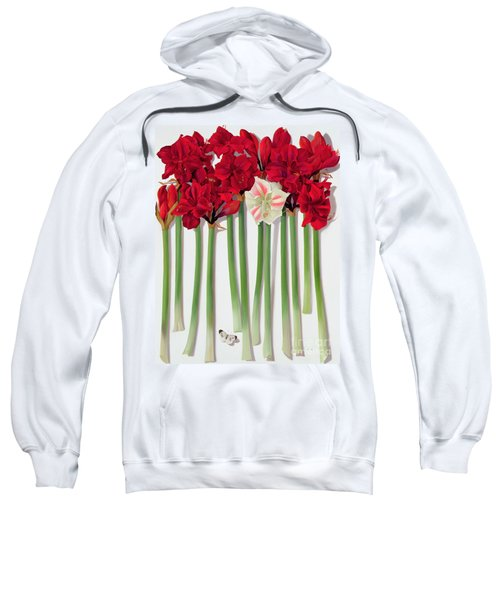 Red Amaryllis With Butterfly Sweatshirt
