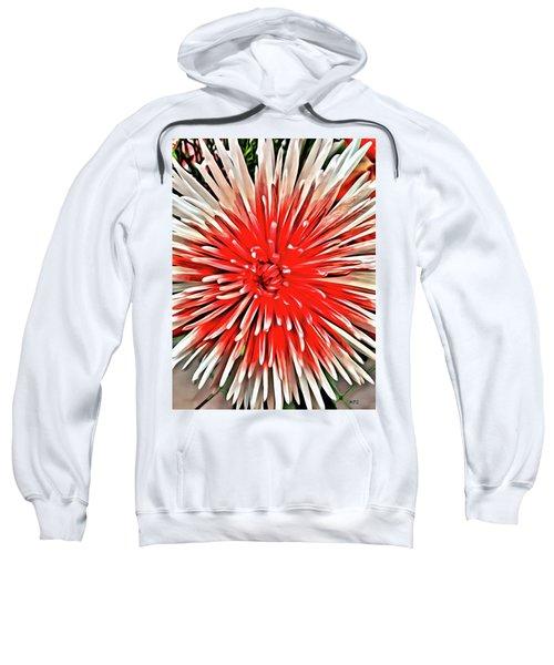Red Burst Sweatshirt