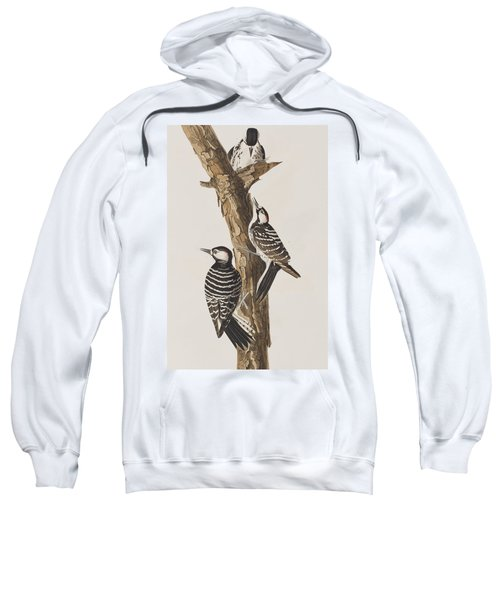 Red-cockaded Woodpecker Sweatshirt by John James Audubon