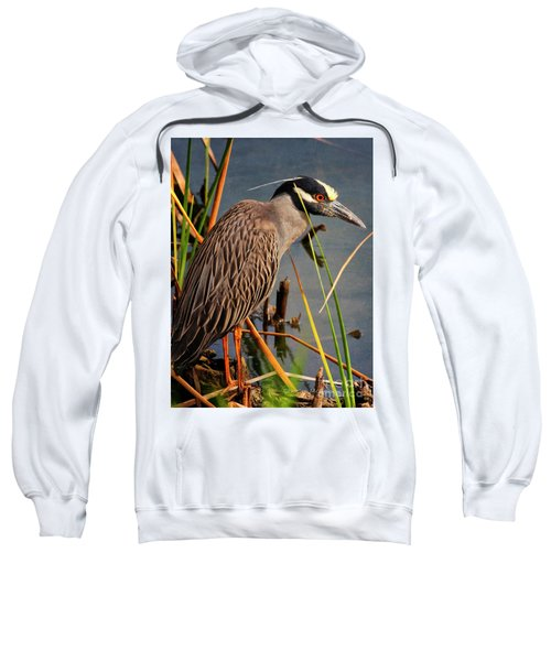 Red Eyes Sweatshirt