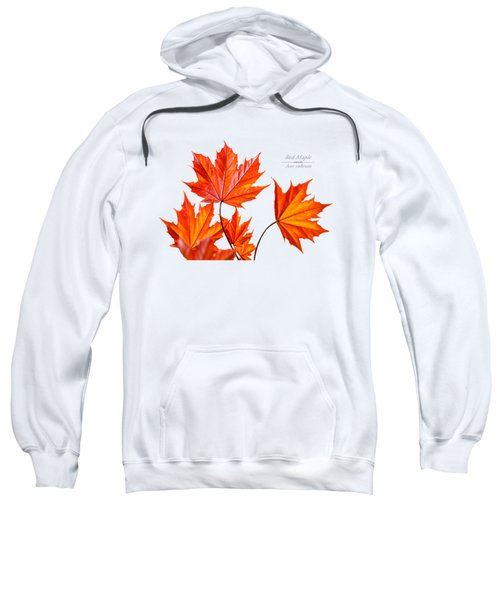 Red Maple Sweatshirt by Christina Rollo