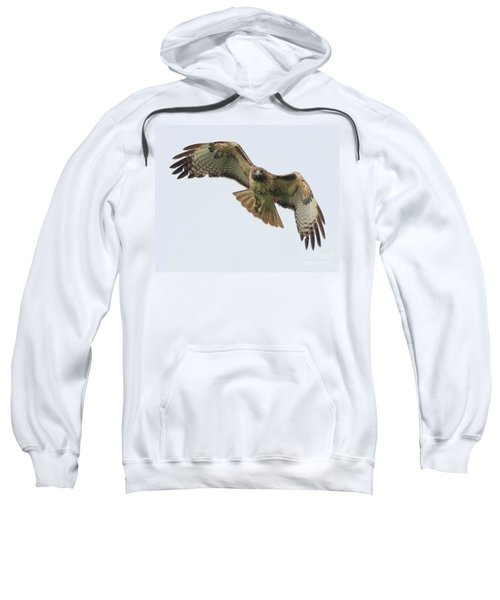 Red Tailed Hawk Finds Its Prey Sweatshirt