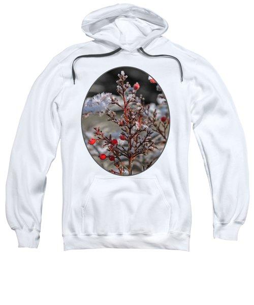 Red Winter Berries Of Nandia Domestica Sweatshirt