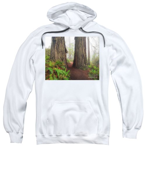 Redwood Trail Sweatshirt