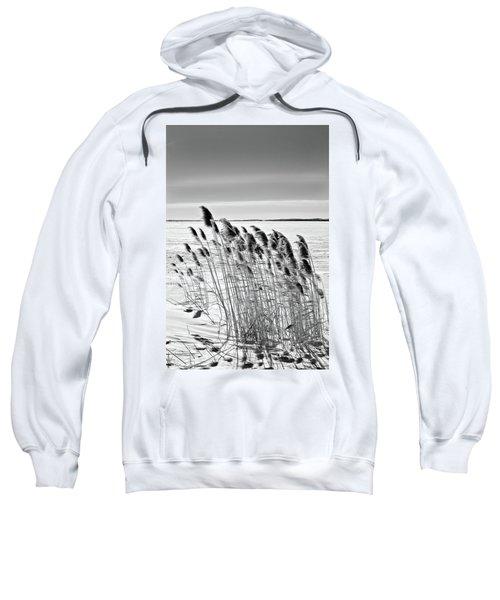 Reeds On A Frozen Lake Sweatshirt