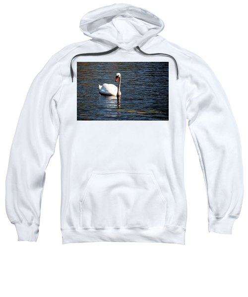 Reflecting Swan Sweatshirt
