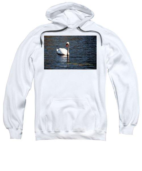 Reflecting Swan Sweatshirt
