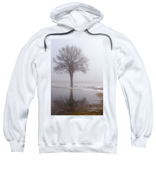 Reflecting Tree Sweatshirt