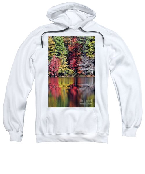 Reflections Of A Bare Tree Sweatshirt
