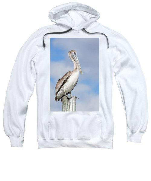 Regal Bird Sweatshirt