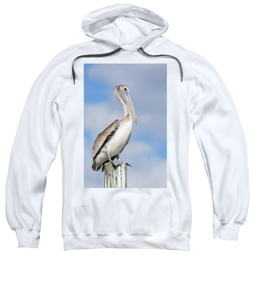 Regal Bird Sweatshirt