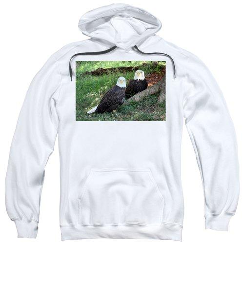 Resting Bald Eagles Sweatshirt