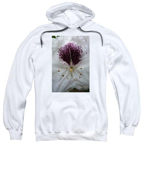 Rhododendron 2 Sweatshirt