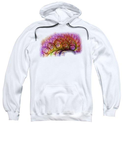 Right Hemisphere Sweatshirt