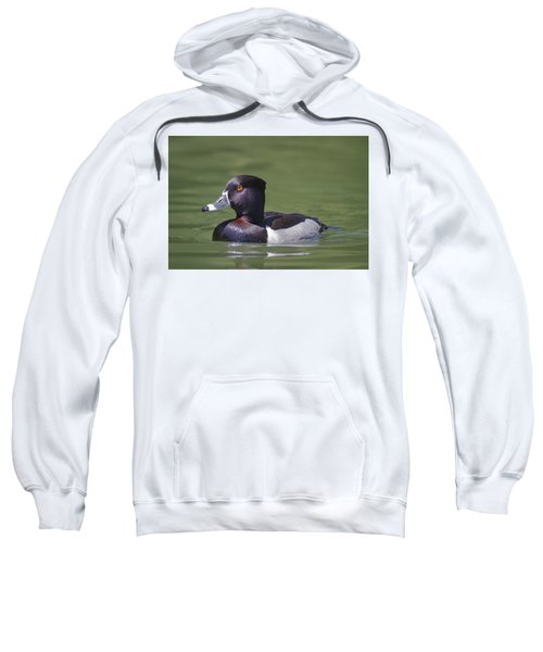Ring-necked Duck Profile Sweatshirt