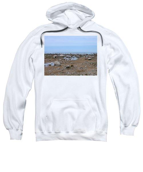 Rocky Shore Sweatshirt