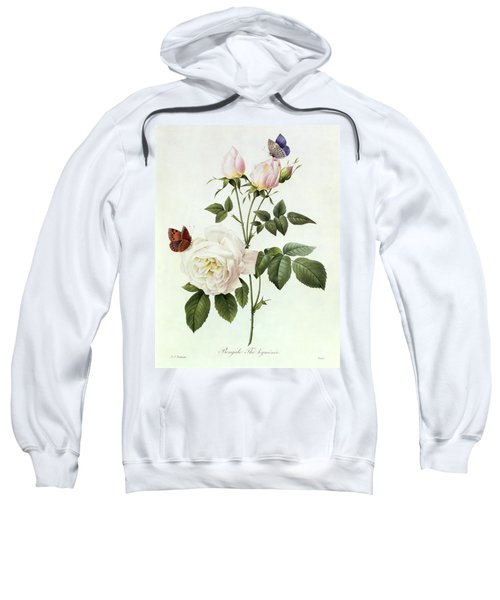 Rosa Bengale The Hymenes Sweatshirt