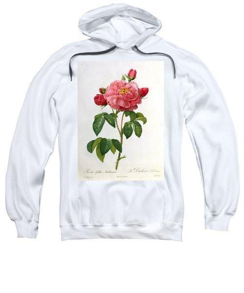 Rosa Gallica Aurelianensis Sweatshirt