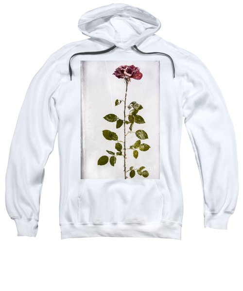 Rose Frozen Inside Ice Sweatshirt