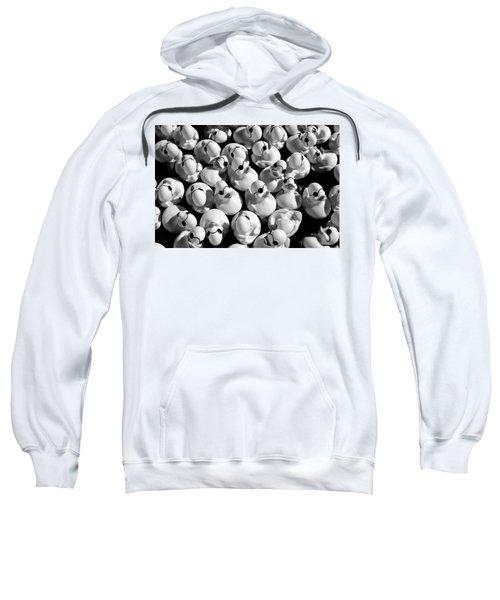 Rubber Duckies Sweatshirt