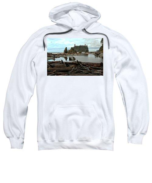Ruby Beach Driftwood Sweatshirt